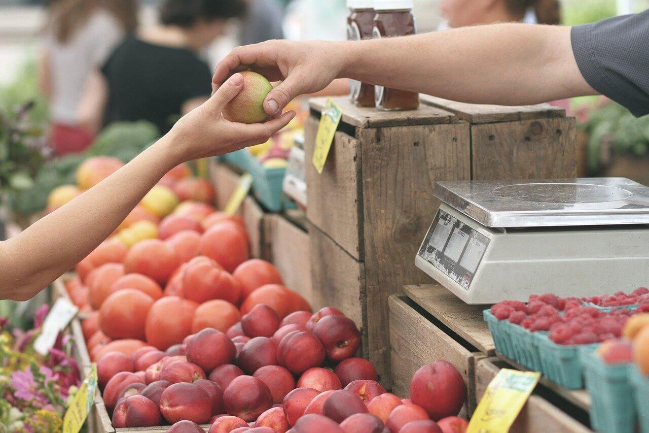 marché producteurs locaux finistère